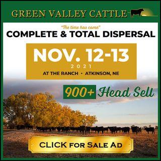 Dennis Garwood - Complete Dispersal Sale at Green Valley Cattle : Episode #385