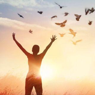 Un senso di libertà