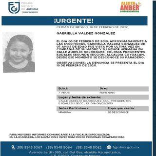 Alerta Amber por Gabriella Valdez González