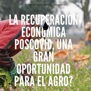 La recuperación económica poscovid, ¿una gran oportunidad para el agro?