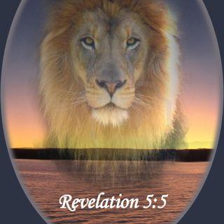 Rev Joe Vision 3-4-20