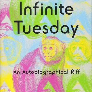 Mike Nesmith Infinite Tuesday Now In Paperback