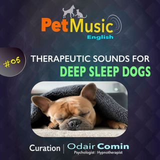 #05 Therapeutic Sounds for Deep Sleep Dogs | PetMusic