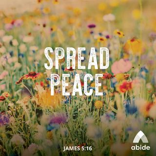 A Word of Peace