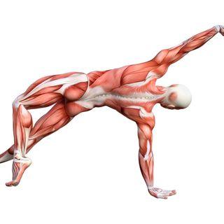 Operatori olistici e corpo fisico