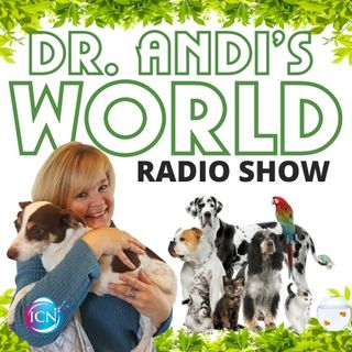 Dr. Andi's World