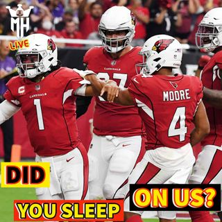 Cardinals are the Real deal