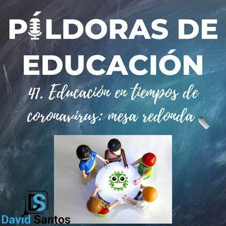 PDE41 - Educación en tiempos de coronavirus: mesa redonda