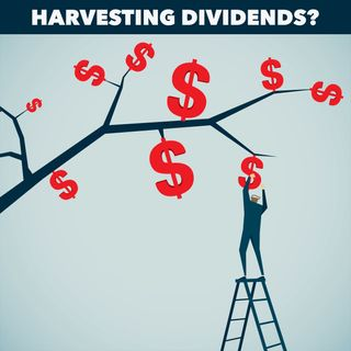 Income from Dividend Stocks?