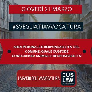 AREA PEDONALE E RESPONSABILITA' DEL COMUNE: QUALE CUSTODE – CONDOMINIO: ANIMALI E RESPONSABILITA' – #SvegliatiAvvocatura