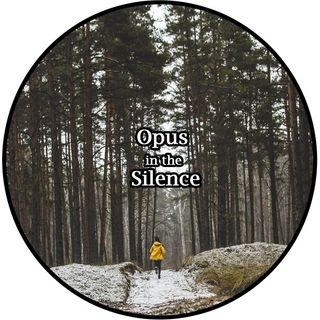 Opus in the Silence 8D - Nanni Dj
