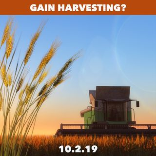 Does it make sense to harvest your gains?