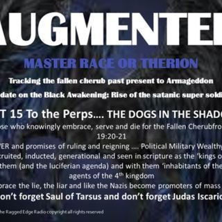 AUGMENTED PART 15 THE DOGS IN THE SHADOWS
