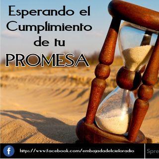 ¿Y mi Promesa?