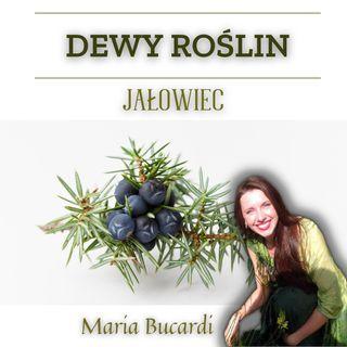 Dewy Roślin -  Jałowiec - ochrona w czasie Ciemności | Maria Bucardi