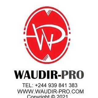 WAUDIR-PRO