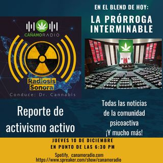 Radiosis Sonora Numero 19