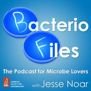 BacterioFiles 328 - Focused Phages Fight Films