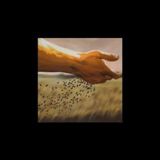 Episode 26 - Intimidad Divina: El grano de mostaza
