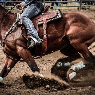 Cowboy by Tale Teller Club