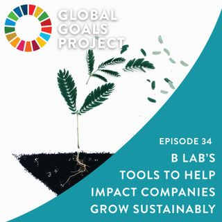 B Lab's Innovative Tools to Help Impact Companies Grow Sustainably [Episode 34]
