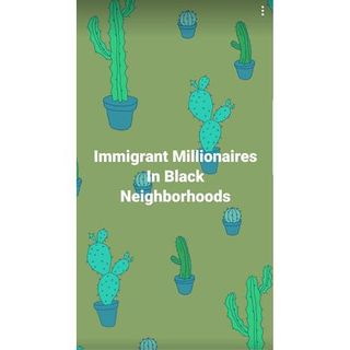 Immigrant Millionaires In Black Neighborhoods: 619-768-2945