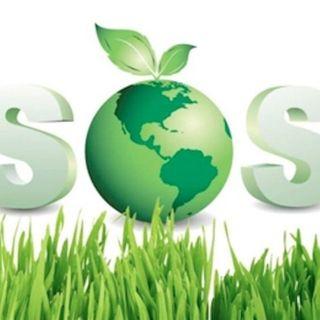 """Celebración del aprendizaje del proyecto """"S.O.S. La Tierra"""". 1º Infantil"""