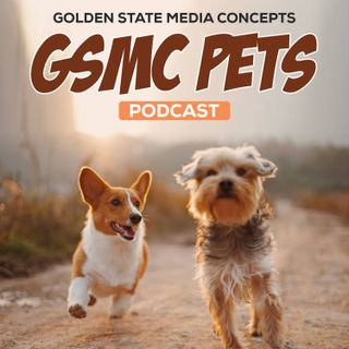 GSMC Pets Podcast Episode 89: Birds as Pets