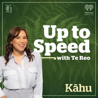 Up To Speed with Te reo Māori