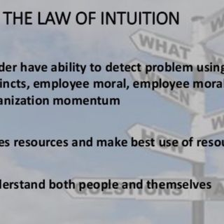 Law #8 Law of Intuition