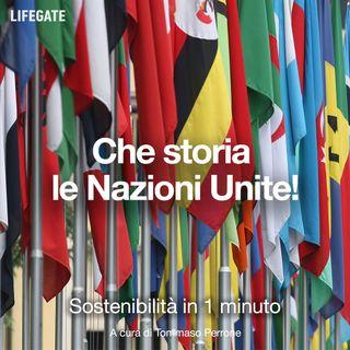 Che storia le Nazioni Unite!