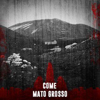 Come Mato Grosso