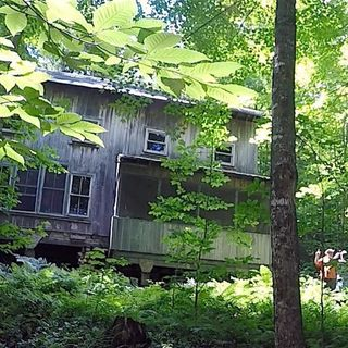 31 - The Umass Cabin
