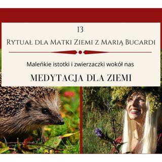 Moje sprawozdanie osobiste z 13 Rytuału dla Matki Ziemi - Maria Bucardi 19.10.2013