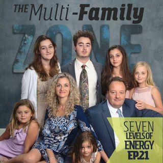 MFZ - Seven Levels of Energy
