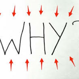 "Question Of The Day /// (The Power Of ""Why"")"
