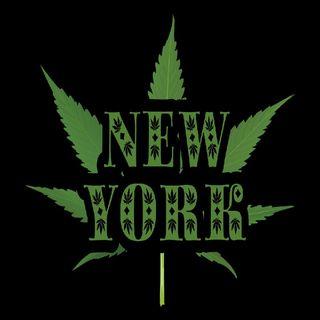 NEW YORK LEGAL CANNABIS!