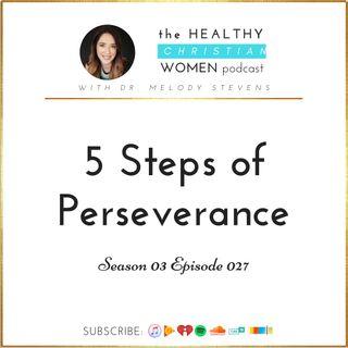 S03 E027: 5 Steps of Perseverance
