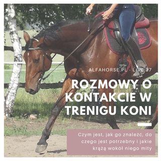 Live 37: Praca na kontakcie w treningu koni