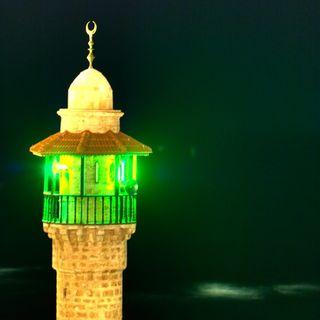 Green Islam - La lotta islamica al riscaldamento globale