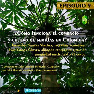 ¿Cómo funciona el comercio y cultivo de semillas en Colombia?