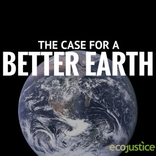 The Case For a Better Earth Episode 6: Environmental Law as Counterculture