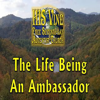 The Life Being An Ambassador