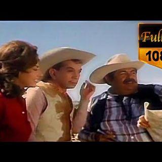 ⛔Por Mis Pistolas película completa en españolpelicula de cantinflasMario Moreno Cantinflas
