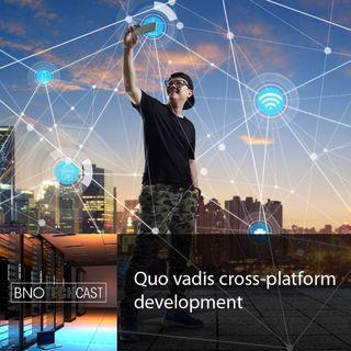 Quo vadis cross-platform development