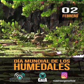 NUESTRO OXÍGENO 02 de febrero Día Mundial de los Humedales