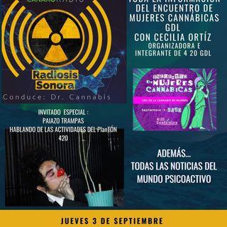 Radiosis Sonora Numero 5