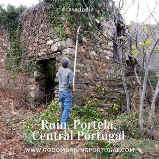 Good Morning Portugal! Casa do Dia: Portela Ruin, Gois