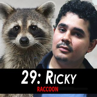 29 - Ricky the Raccoon