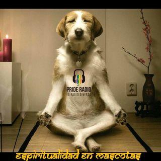 Espiritualidad En Nuestras Mascotas